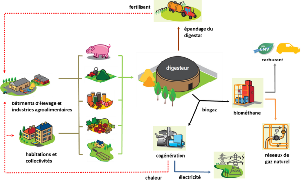 schema-methanisation-agricole-methaniseur-com